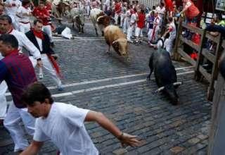 Несколько человек получили ранения во время первого забега быков в Памплоне